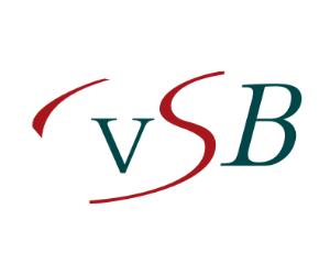 Vereniging Surinaams Bedrijfsleven Logo